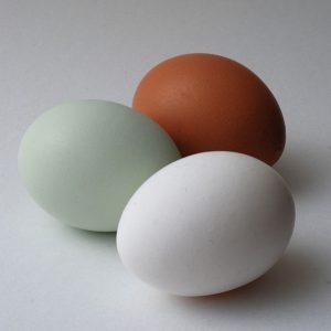 Huevos azules