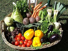 Propiedades anticolesterol de los vegetales