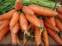 Zanahorias para bajar el colesterol